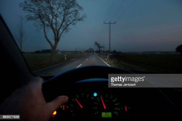 deer crossing or animal crossing, a wild boar appearing in the headlights of a moving car at dusk - deer in headlights stock pictures, royalty-free photos & images