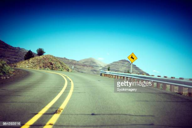 deer crossing sign along rural highway - animal crossing stock pictures, royalty-free photos & images