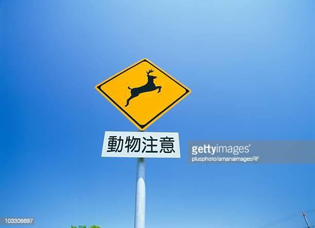 deer crossing sign, bekkai, hokkaido, japan - plusphoto stock pictures, royalty-free photos & images