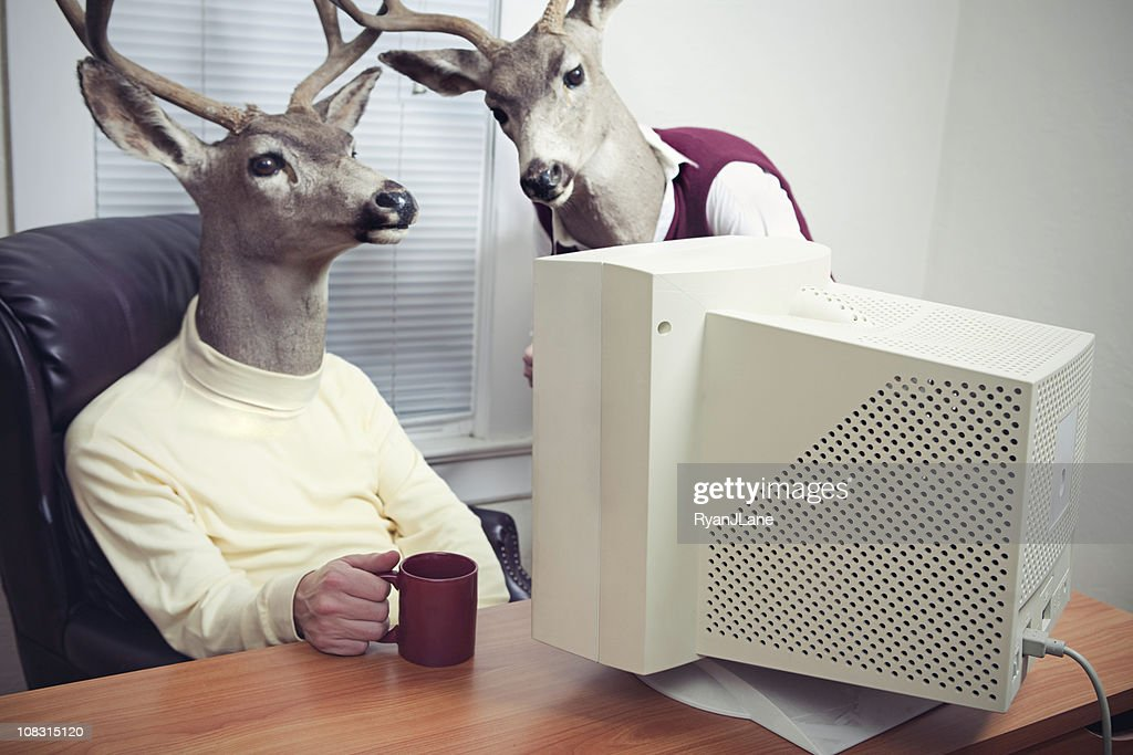 Deer Head Men Working At Office : Stock Photo