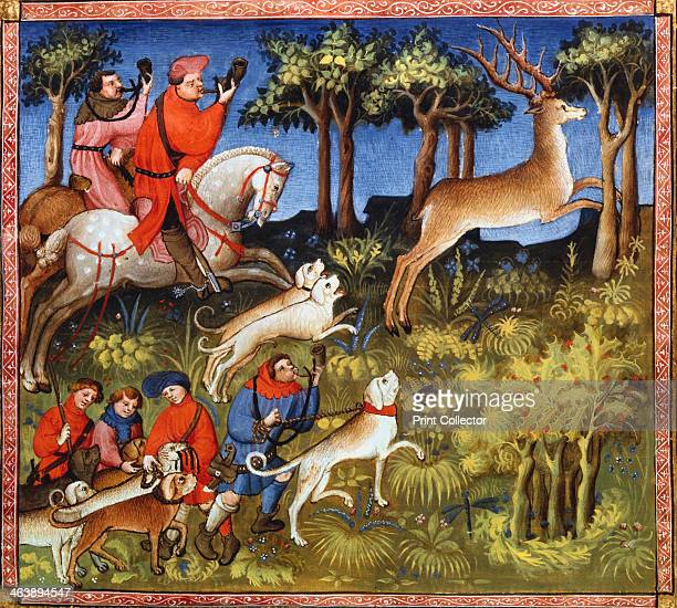Deer hunt 15th century Hounds and mounted huntsmen blowing horns chase a stag through a forest In the left foreground hunt servants prepare to...