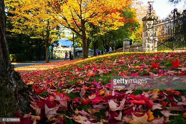 Deer Lake Park in Autumn in Burnaby BC Canada