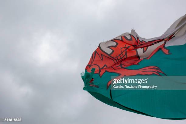 defeated dragon - geraint rowland stock pictures, royalty-free photos & images