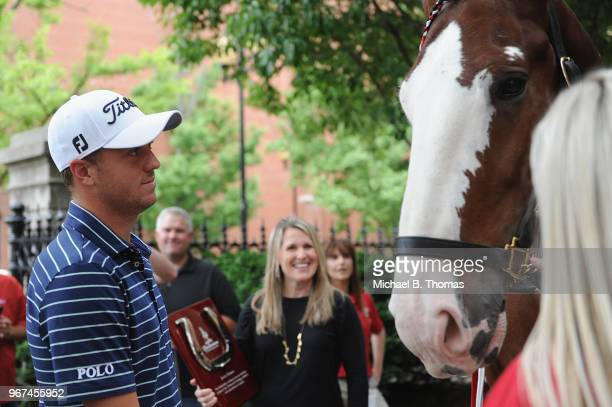 Defending PGA Champion Justin Thomas greets a Clydesdale during the 2018 PGA Championship Media Day visit to AnheuserBusch Brewery on June 4 2018 in...