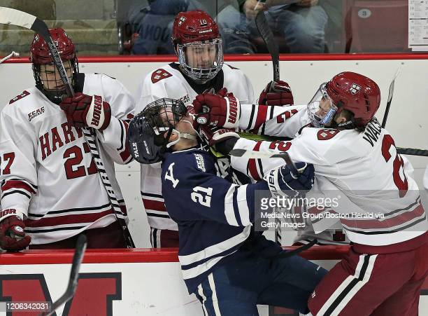 Defenseman Reilly Walsh of the Harvard Crimson shoves forward Tyler Welsh of the Yale Bulldogs into Harvard's bench during the first period of the...