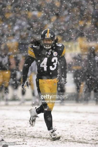 Defensive back Troy Polamalu of the Pittsburgh Steelers in action against the Chicago Bears as snow falls at Heinz Field on December 11, 2005 in...
