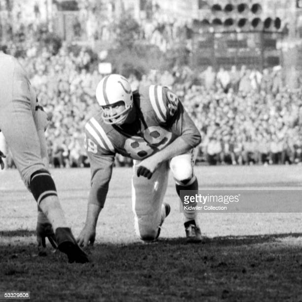 Defensive lineman Gino Marchetti of the Baltimore Colts lines up for the next play during a game on November 22 1959 against the San Francisco 49ers...