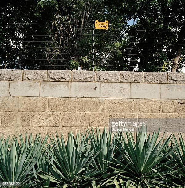 Defensive sharp aloe plants along with a wall topped by an electric fence are part of household security in the suburb of Houghton This sort of...