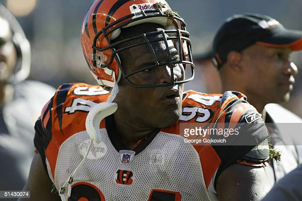 Defensive tackle Tony Williams of the Cincinnati Bengals during the Bengals 2817 loss to the Pittsburgh Steelers at Heinz Field on October 3 2004 in...