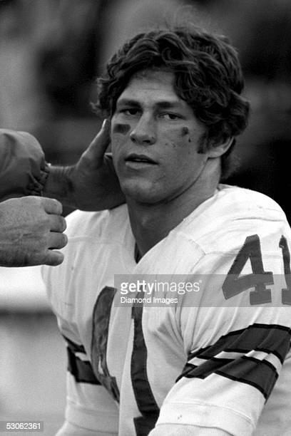 Defensiveback Charlie Waters of the Dallas Cowboys on the bench during a game on December 18 1971 against the St Louis Cardinals at Texas Stadium in...
