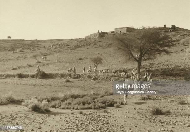 Defile a caravan on donkey alTaif Hijaz Saudi Arabia Artist George Rendel