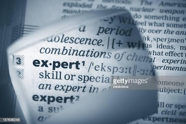Definition 'expert'