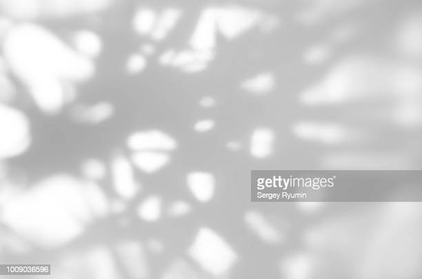 defocused abstract gray shadows as a background - schaduw stockfoto's en -beelden