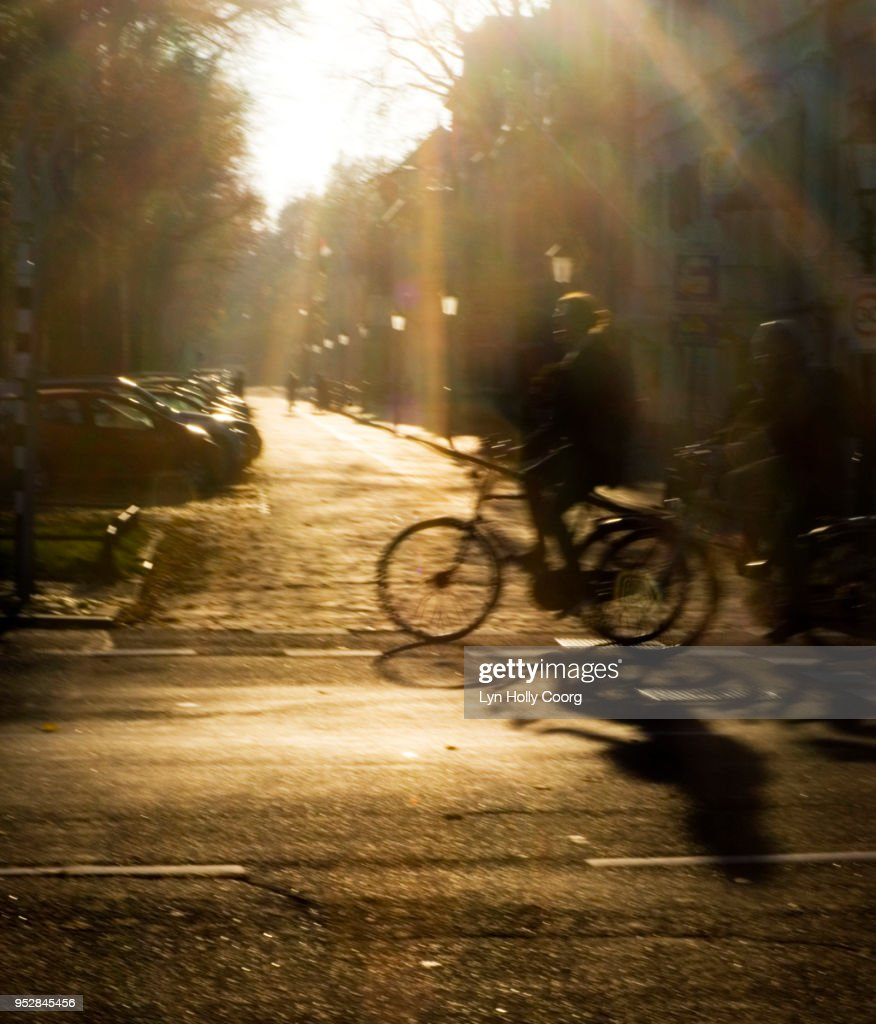 Defocused Cyclists on Dutch road in Golden hour : Stock Photo