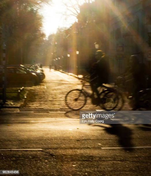 defocused cyclists on dutch road in golden hour - lyn holly coorg stock pictures, royalty-free photos & images