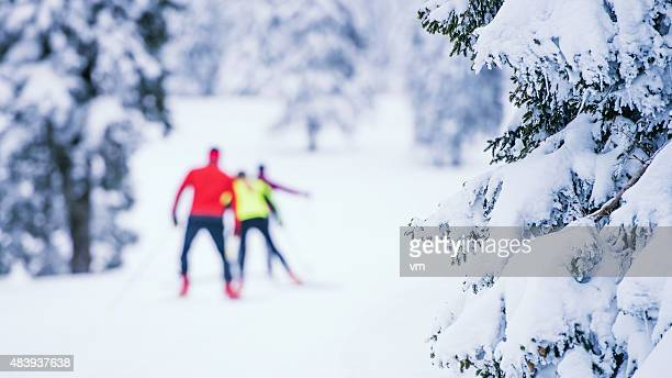 Defocused Shot Of Small Group Back Country Nordic Skiing