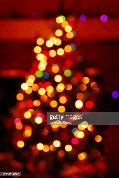 defocussed christmas tree lights - lyn holly coorg imagens e fotografias de stock