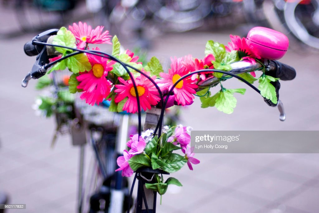 Defocussed Dutch bicycle decorated with flowers : Stock Photo