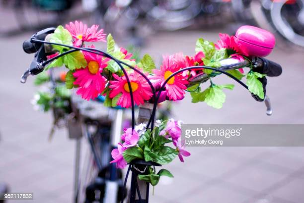 defocussed dutch bicycle decorated with flowers - lyn holly coorg stock photos and pictures