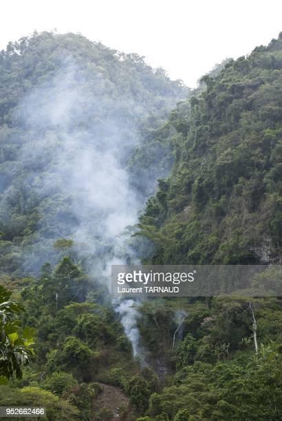 Deforestation in Anjouan