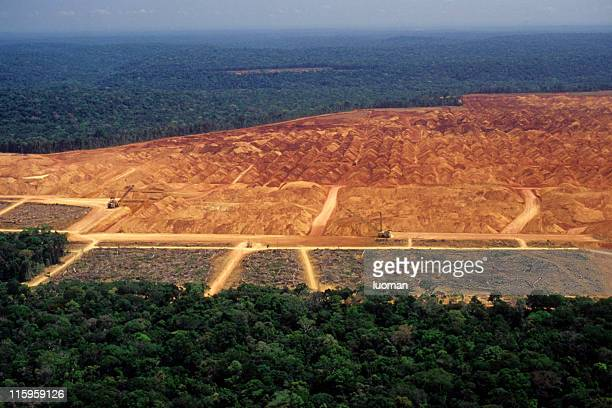 deforestation in the amazon - brazilië stockfoto's en -beelden