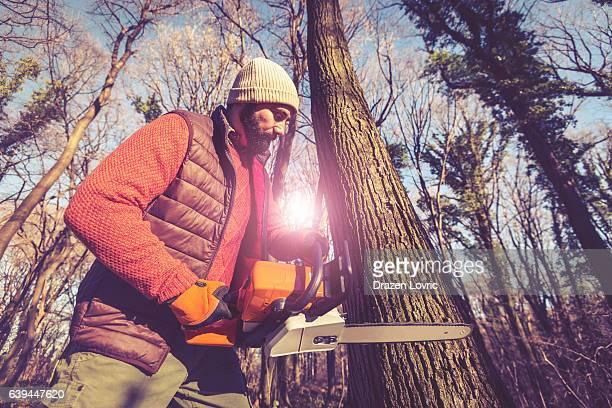 Deforestation  - lumberjack cutting tree, wood processing industry