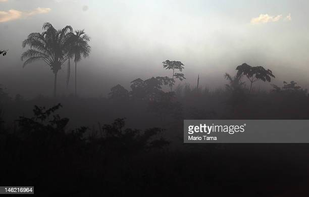A deforested section of Amazon rainforest is seen in dust kicked up from a passing automobile on June 11 2012 in Para state Brazil Although...