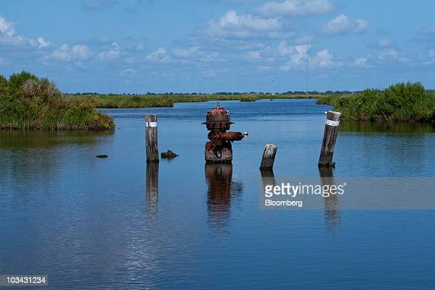 A defunct wellhead rimmed by pilings marks the entrance of a badly eroded canal on the Harry Bourg Corp preserve in Louisiana US on June 17 2010 More...