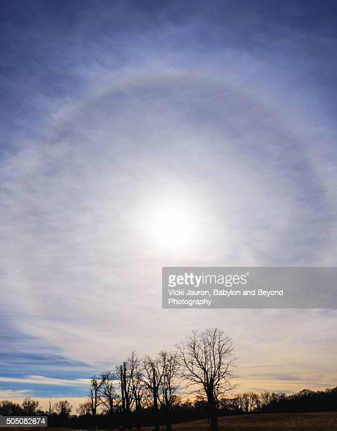 a 22 degree halo around the sun taken at caumsett state park - huntington suffolk county new york state stock pictures, royalty-free photos & images