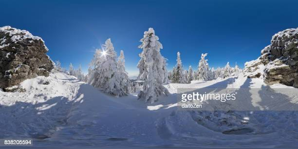 360 degree panoramic view of Bavarian winter landscape with snow packed trees, Great Arber, Bavarian Forest , Bavaria, Germany