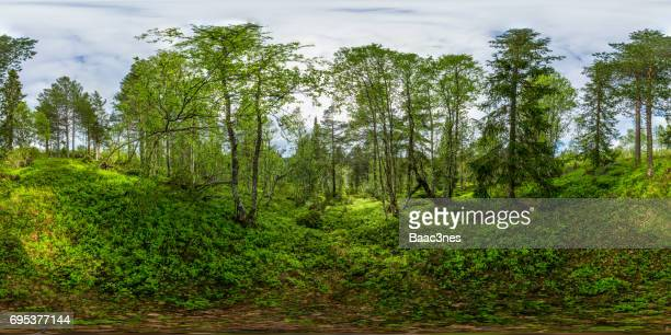 360 degree view - norwegian nature - 360 degree view stock pictures, royalty-free photos & images