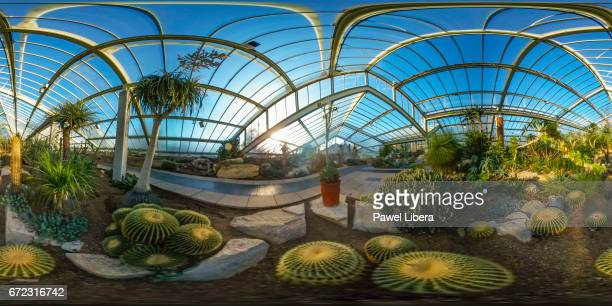 360 degrees view of the dry tropic section in the Princess of Wales Conservatory at the Royal Botanic Gardens Kew in London