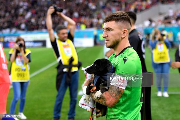 Deian Sorescu holds a dog before enter the pitch in action during the Romania Liga 1 game between FCSB and Dinamo Bucharest, played on Arena...