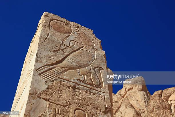 Deir elBahari or Dayr alBahri Part of the temple engravings on a column at the mortuary temple of Hatshepsut Egypt