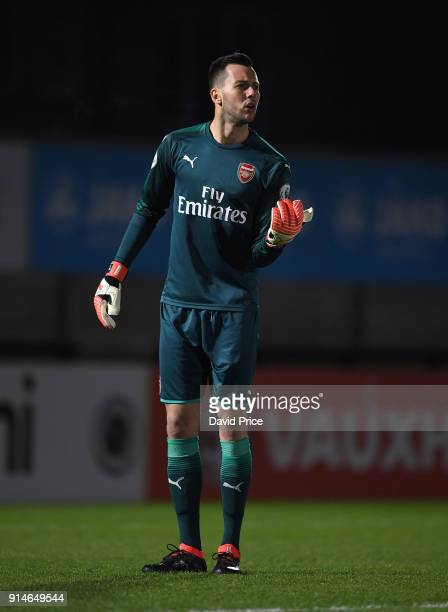 Dejan Iliev of Arsenal during the Premier League 2 match between Arsenal and Everton at Meadow Park on February 5 2018 in Borehamwood England