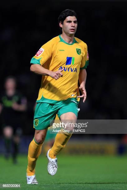 Dejan Stefanovic, Norwich City