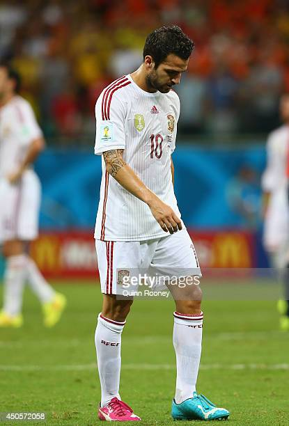 A dejected Cesc Fabregas of Spain looks on during the 2014 FIFA World Cup Brazil Group B match between Spain and Netherlands at Arena Fonte Nova on...