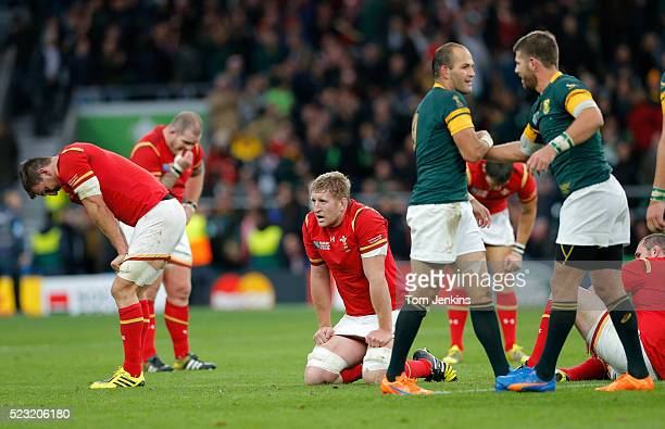 Dejected Welsh players and celebrating Springboks on the final whistle during the South Africa v Wales Rugby World Cup quarterfinal match at...