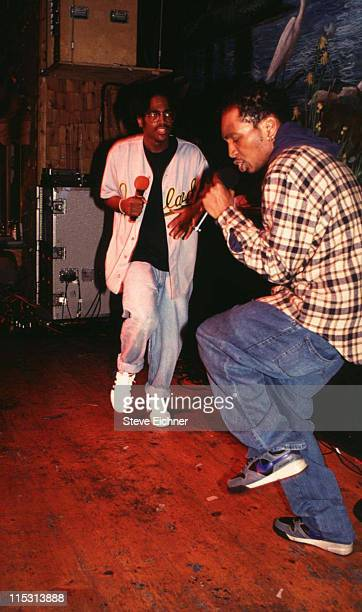 Del the Funky Homosapien during Del the Funky Homosapien in Concert at Wetlands 1991 at Wetlands in New York City New York United States