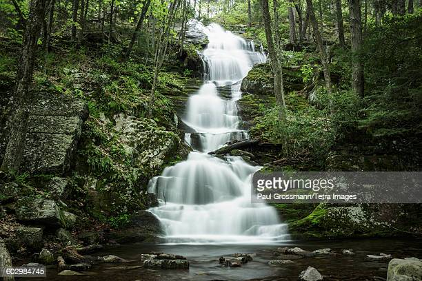 USA, Delaware, Buttermilk Falls, Waterfall falling into river in middle of forest