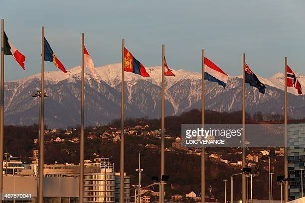 Delegations flags are pictured moments before the start of Opening Ceremony of the Sochi Winter Olympics on February 7 2014 in Sochi AFP PHOTO / LOIC...