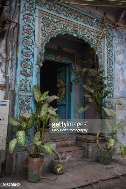 delhi doorway with potted plants - gary colet stock pictures, royalty-free photos & images