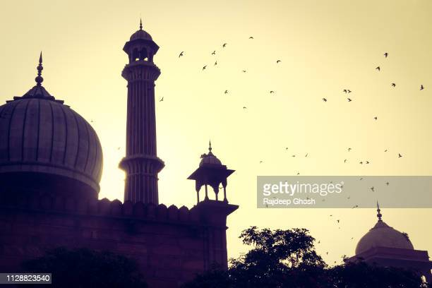 delhi jama masjid during sunrise - dome stock pictures, royalty-free photos & images