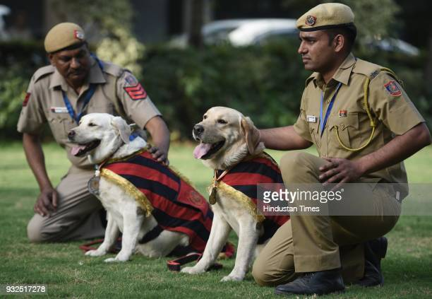 Delhi Police Dog squad Twins Babu and Baby along with their handlers Ct Pawan Kumar and HC Nagendra Prasad pose for media at PHQ on March 15 2018 in...