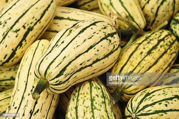 Delicata squash pumpkins