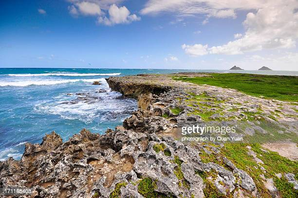 a delicate coral island - yuan quan stock pictures, royalty-free photos & images