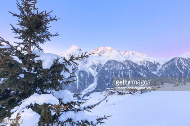 delicates tones during twilight at the village of latsch, bergun, albula valley, district of prattigau/davos, canton of graubünden, switzerland, europe. - davos stock pictures, royalty-free photos & images