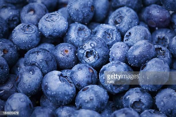 delicious blueberries - nat stockfoto's en -beelden