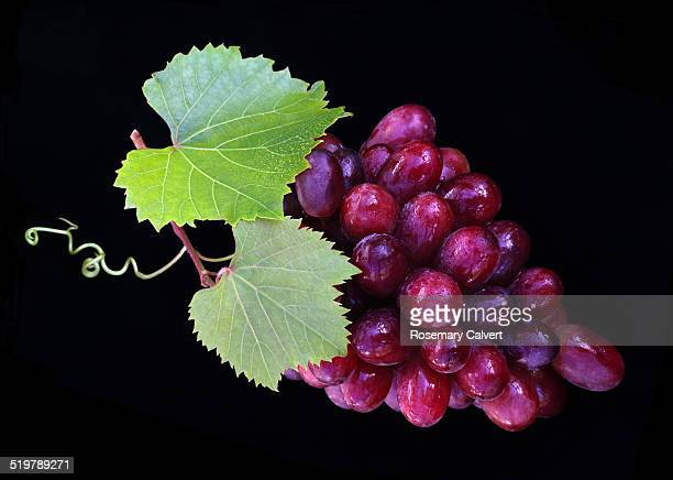 Delicious red grapes and leaves on black.