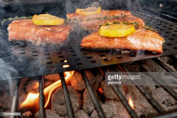 delicious salmon filets on a grill topped with lemon slices - salmon seafood stock pictures, royalty-free photos & images
